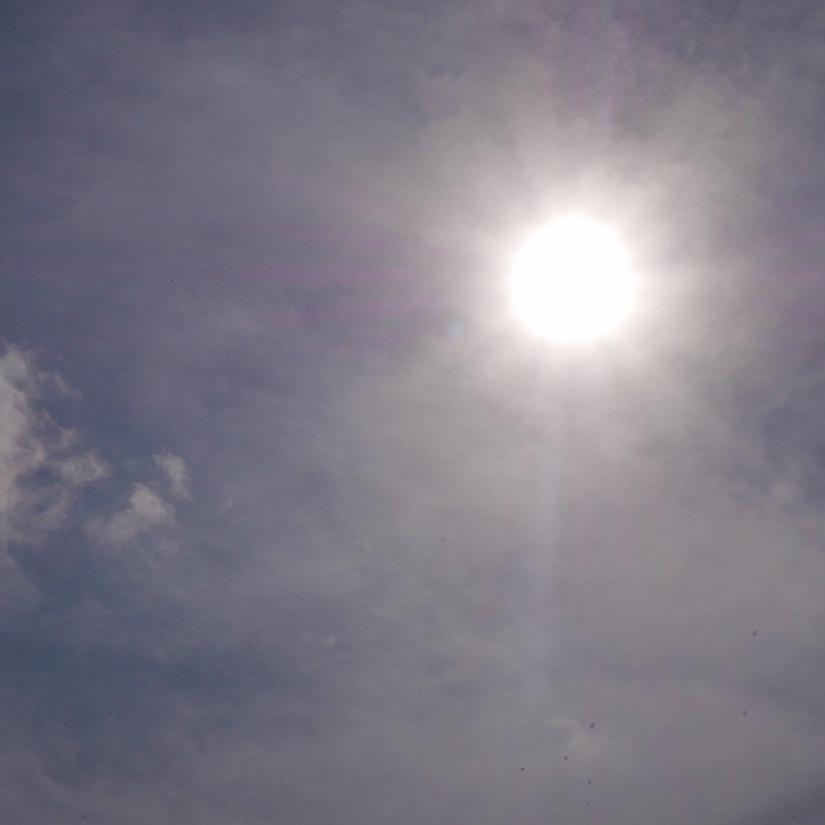 zon.jpg