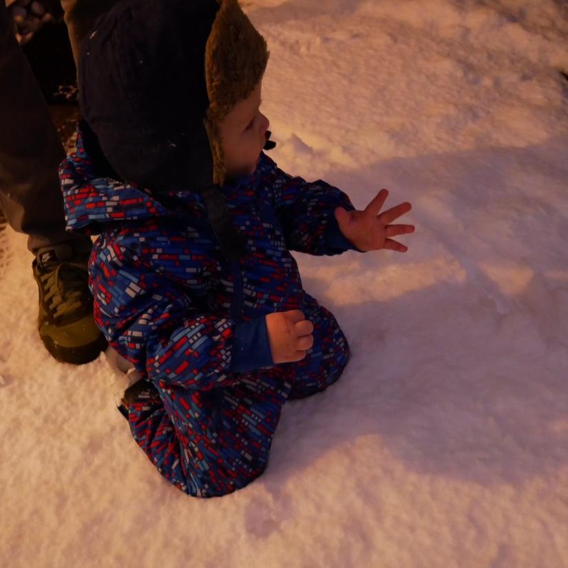 in-de-sneeuw.jpg