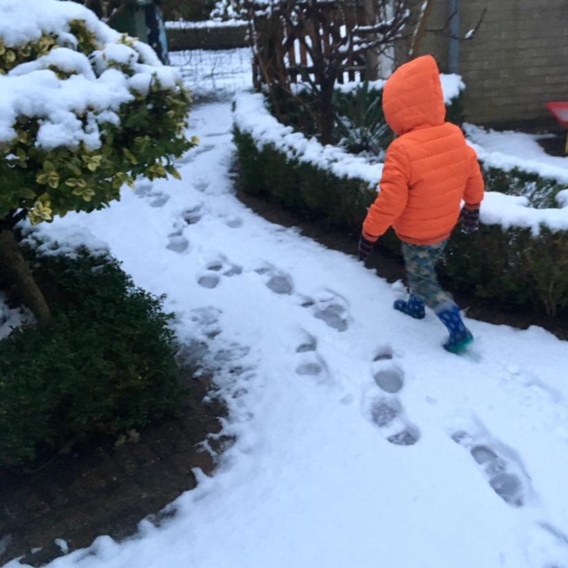 spelen sneeuw